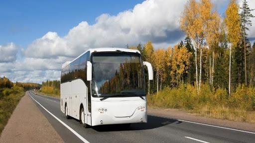 Автобусные перевозки